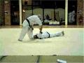 Don-aikido-watercolour